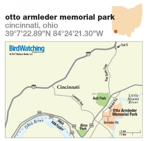 251. Otto Armleder Memorial Park, Cincinnati, Ohio