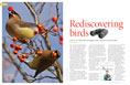 Rediscovering birds