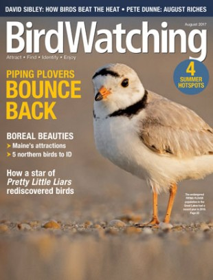 BirdWatching Magazine, August 2017