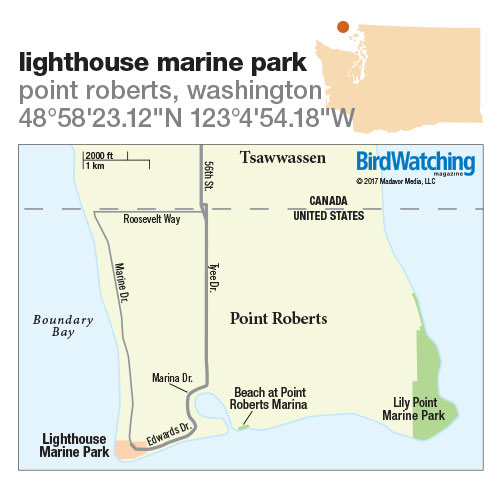 257. Lighthouse Marine Park, Point Roberts, Washington