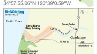 Santa Maria River Estuary