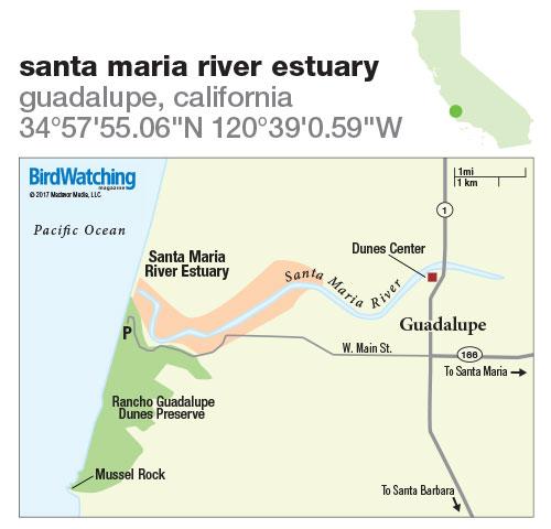 262. Santa Maria River Estuary, Guadalupe, California