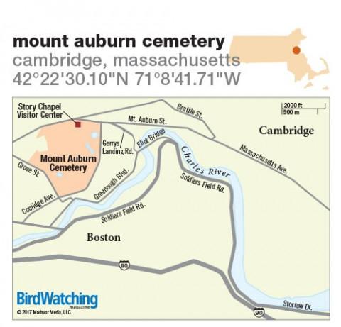 263. Mount Auburn Cemetery, Cambridge, Massachusetts