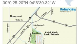 Cattail Marsh Scenic Wetlands