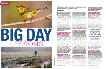This article was first published in the February 2017 issue of BirdWatching magazine. Subscribe