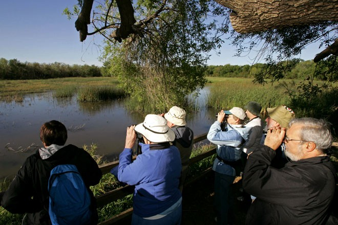 Birdwatchers scan a marsh at Santa Ana National Wildlife Refuge in South Texas, one of the premier birding hotspots in the U.S. Photo by Steve Hillebrand/U.S. Fish and Wildlife Service