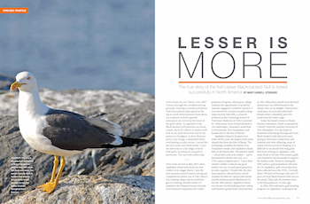 This article was first published in the June 2017 issue of BirdWatching. Subscribe