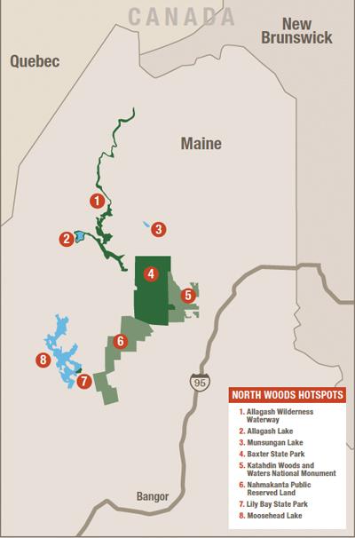 Maine-birding-map - BirdWatching