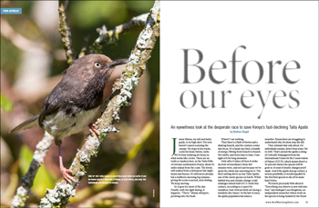 This article was published in the April 2017 issue of BirdWatching. Subscribe