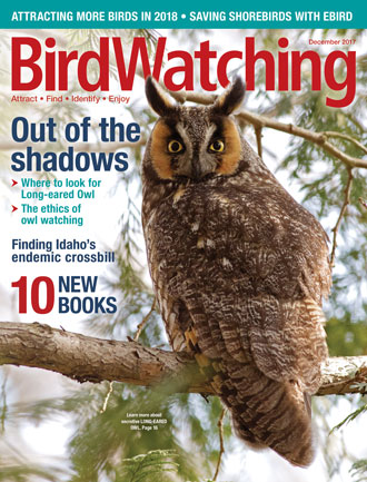 december issue of birdwatching magazine now availablebwm1711_cover_330x433