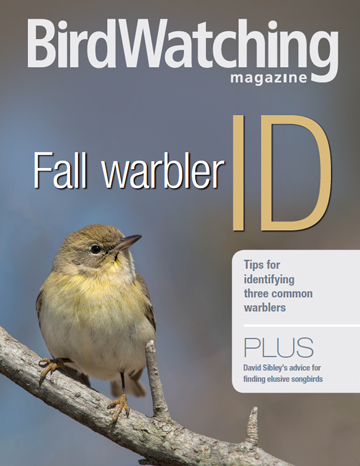 Fall-warbler-guide-cover