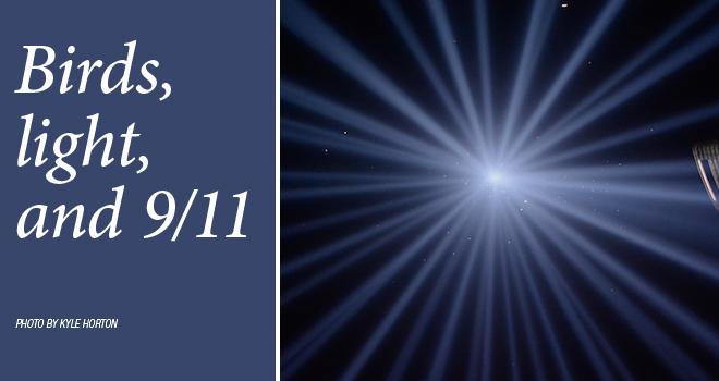 light-9-11-rotator