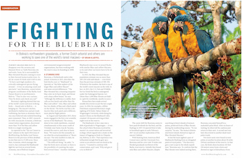 This article was first published in the December 2017 issue of BirdWatching. Subscribe