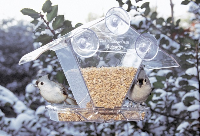 Tufted Titmice snack at a window feeder on a winter day. Photo courtesy Cole's Wild Bird Products Co.