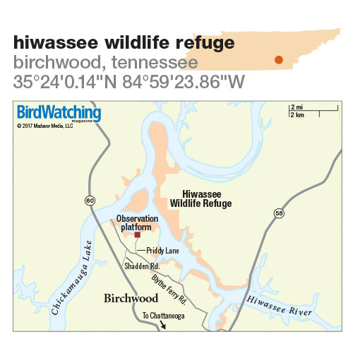 269. Hiwassee Wildlife Refuge, Birchwood, Tennessee