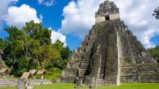 Birding Tikal National Park