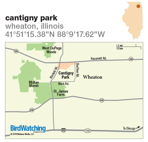 273. Cantigny Park, Wheaton, Illinois