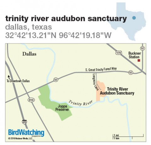 274. Trinity River Audubon Sanctuary, Dallas, Texas