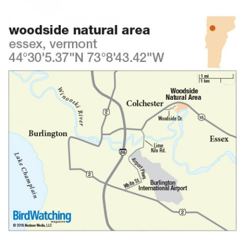 271. Woodside Natural Area, Essex, Vermont