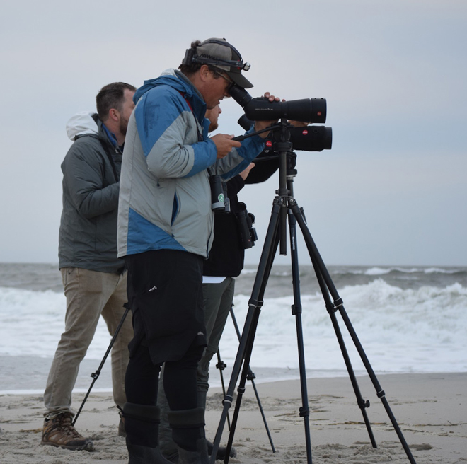 Dave La Puma, director of the Cape May Bird Observatory, and his team scope for birds on a beach. Photo by Chris Neff/New Jersey Audubon