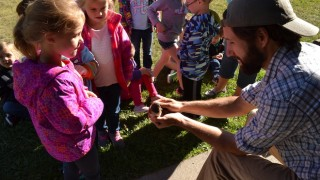 kids learn about birds