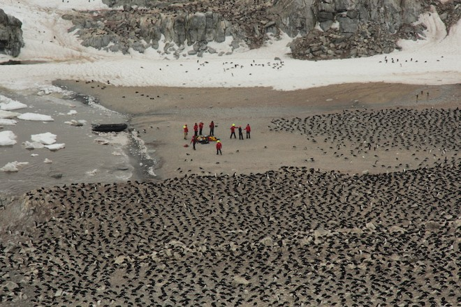 This aerial image taken with a drone shows the researchers amid a sea of nesting penguins. oCredit: Thomas Sayre McChord, Hanumant Singh, Northeastern University, © Woods Hole Oceanographic Institution