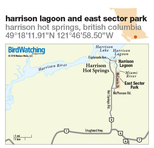 275. Harrison Lagoon and East Sector Park, Harrison Hot Springs, British Columbia