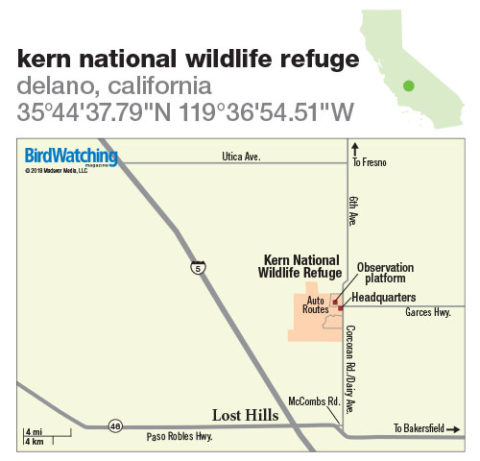 276. Kern National Wildlife Refuge, Delano, California