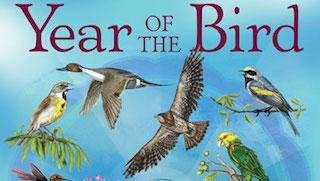 Celebrate World Migratory Bird Day this Saturday