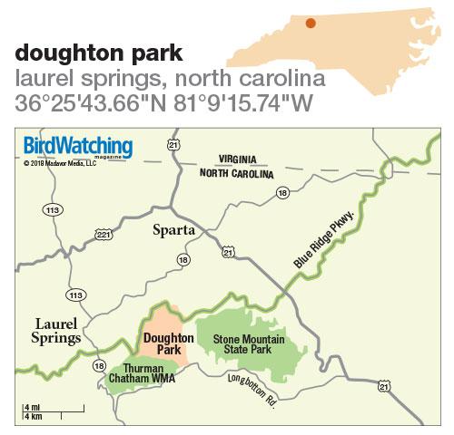 277. Doughton Park, Laurel Springs, North Carolina