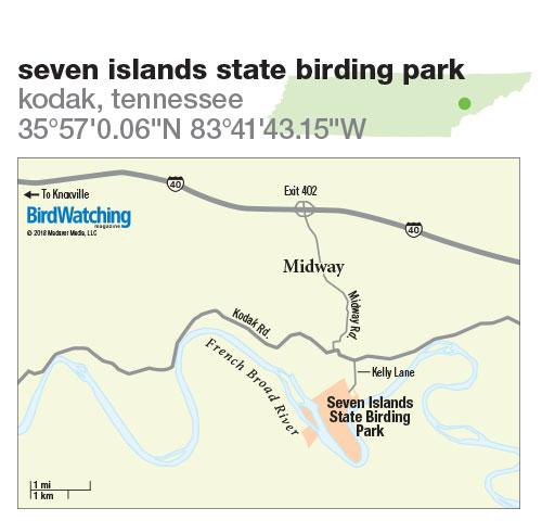 278. Seven Islands State Birding Park, Kodak, Tennessee
