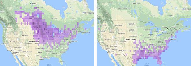 Sedge Wren Maps