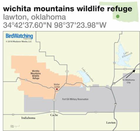 Mountains In Oklahoma Map.280 Wichita Mountains Wildlife Refuge Lawton Oklahoma Birdwatching