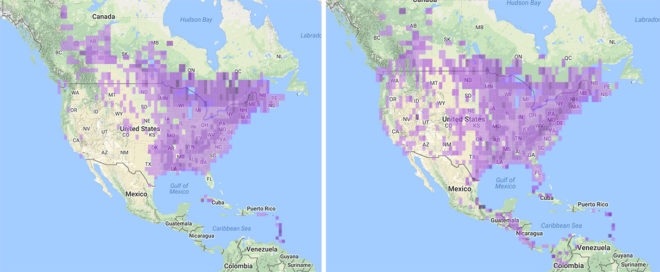 Broad-winged Hawk migration maps.