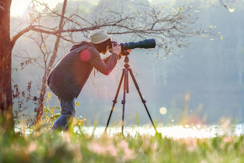 Best Camera For Birding 2019 Nine top cameras for birders   BirdWatching