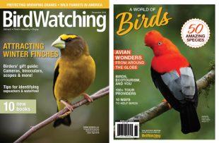 15 great gift ideas for birdwatchers
