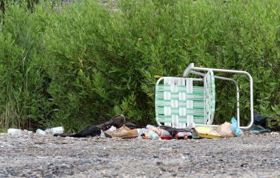 Help birds by cleaning up trash, especially plastic