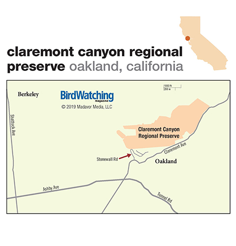 291. Claremont Canyon Regional Preserve, Oakland, California