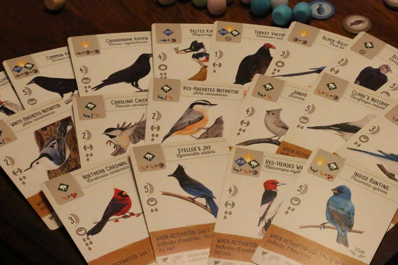 Wingspan cards