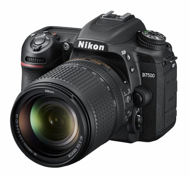 Best cameras for bird photography - BirdWatching