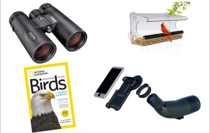 Best deals for birders on Amazon Prime Day