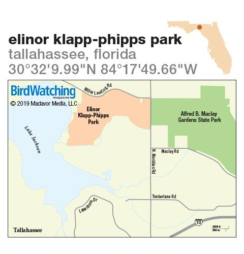293. Elinor Klapp-Phipps Park, Tallahassee, Florida