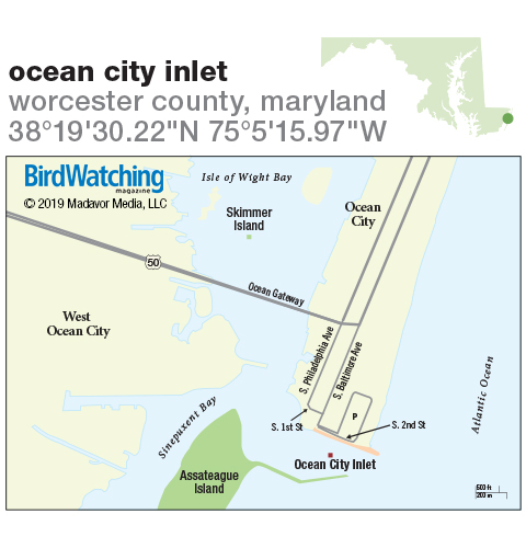 294. Ocean City Inlet, Worcester County, Maryland
