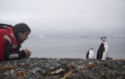 In Greenpeace documentary 'Sanctuary,' Javier Bardem advocates for protecting Antarctic region