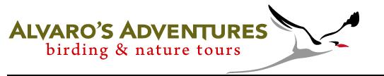 Alvaro's Adventures Birding & Nature Tours