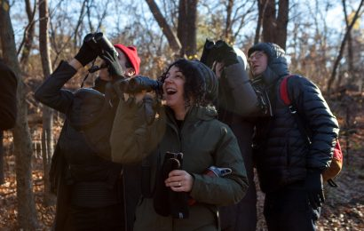 It's time to register for the Christmas Bird Count
