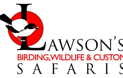 Lawson's Birding and Wildlife Safaris