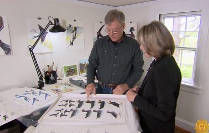 CBS Sunday Morning profiles David Sibley