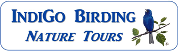 IndiGo Birding Nature Tours