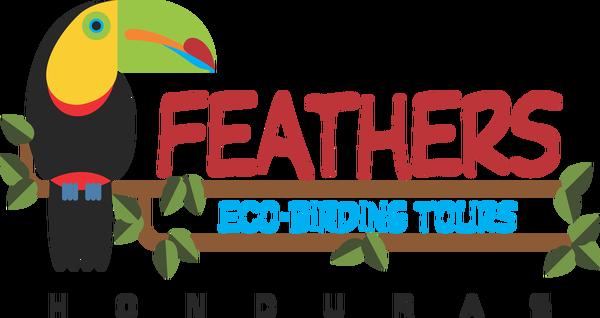 Feathers Eco-Birding Tours